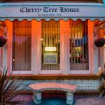 Evening at the Cherry Tree House Hotel 2014