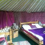 Gwaun View Yurts