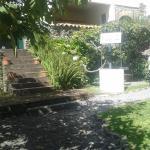 Parque trasero