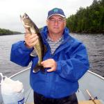 Another French River pickerel