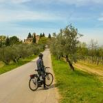On The Road In Chianti