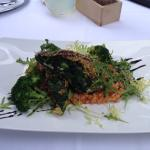 Veggie Cordon mit Wirsing, Spinat und Käse - Tomatenrisotto