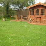 BBQ and Decking areas