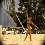 VBGB is surrounded by 5 sand volleyball courts.