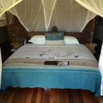 Foto de Wilderness Safaris Xigera Camp