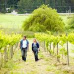 The owners in the vineyard