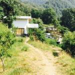 Kafal House Image