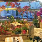 Our Garden ( 3 )