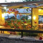 Our Garden (4 )