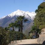 Panoramablick vom Tappeinerweg