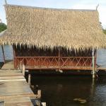 Foto de Bamboo House
