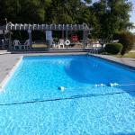 Carolina Motel