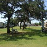 Tree Shaded Camper Site