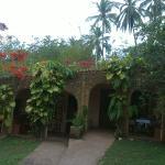 Foto de Eva Lanka Hotel