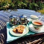 Tea and cake when I arrived, taken in the sunny garden with bonus labrador