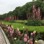 Foto de Crowne Plaza Century Park Shanghai