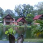 vistas desde el porche del bungalow