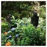 the garden of standing tall