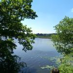 Blick auf den See vom Weiher