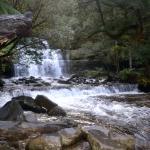 Stunning Liffey Falls