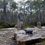 Tasmanian Sculptor Stephen Walker