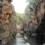 Backward into the water at Las Greitas