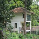 Foto de Kurumba Village Resort