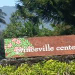 Princeville Center