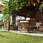 Relax between fruit trees