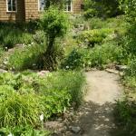 orto botanico terrazzamento