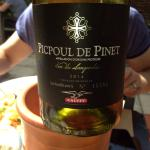 Yummy bottle of PicPoul
