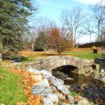 Autumn in Gypsy Hill Park