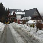 Wald Hotel Willingen Foto