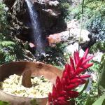 Sapphire Falls & Jungle Spa