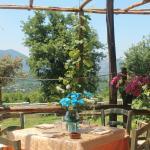Farmhouse Antico Pozzo of Olives