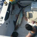 Excellent crew 