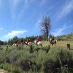 Trail Riding through our mountain cattle country.