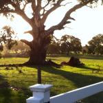 South Mokanger Farm Cottages Photo
