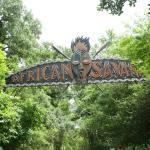 Audubon Zoo 24