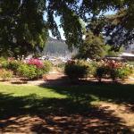 The garden area!