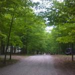 Darien Lake Amusment and Water Park Campground Photo