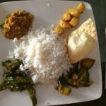 Disappointing rice & curry - half the portions of other restaurants, at twice the price