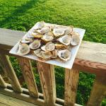 Fresh Shucked Malpeques from Carr's Seafood Market