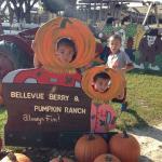 Bellevue Berry and Pumpkin Ranch