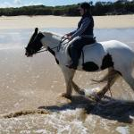 Tina's Riding Stables Foto