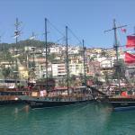 The harbor Foto