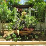 "Lush tropical plants in our ""secret garden"" paradise."