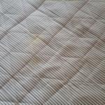 Disgusting mattress
