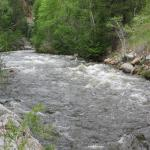 Pecos Wilderness Area - Pecos River along road 63