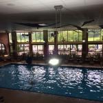 Stinky Pool!